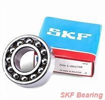 SKF SYE 2-1/2 CHINA Bearing 63.5*266.7*144.462
