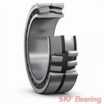 40 mm x 60 mm x 1 mm  SKF AS 4060 JAPAN Bearing 40*60*1