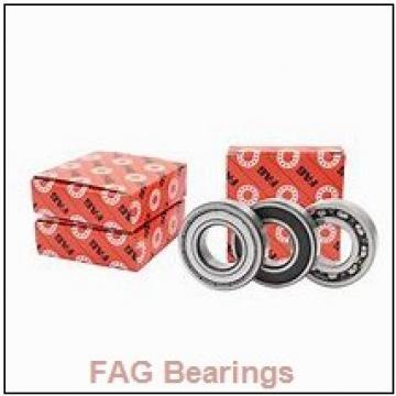 FAG NU413-XL-M1-C3 USABearing 65*160*37